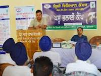 Free Anti Rabies & De-Worming Camp For Farmers In Ludhiana