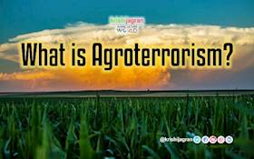 What is Agroterrorism- Historical Perspective of Bioterrorism & Food Terrorism?