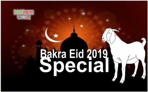 Eid 2019: When is Bakra Eid? Know its Importance & Eid ul Adha's Mouth Watering Dishes