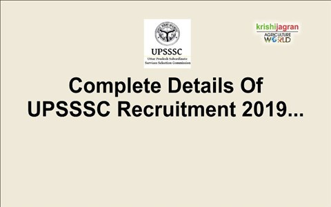 UPSSSC Recruitment 2019: Eligibility, Pay Scale & Other Details to Apply for 486 Technician Posts