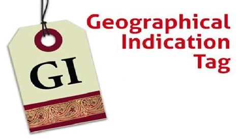GI Tags Allotted to 4 New Products from Tamil Nadu, Mizoram & Kerala