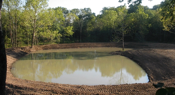Dimensions Dig Different Sized Fish Ponds